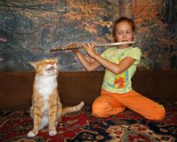 Соло для кота с флейтой.