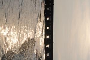 перлинки в краплях води
