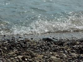 У берега моря
