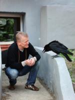Наедине с мудрой птицей