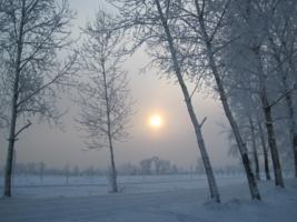 Пустынно в морозный день