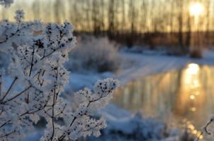 закат морозного дня