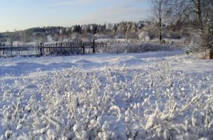 А за околицей зима