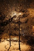 Рождественский снегопад
