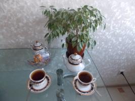 """песня""""Чай"""""""
