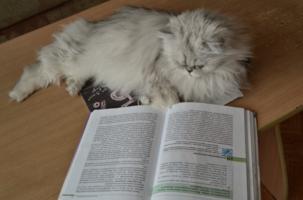 занимательная биология
