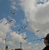 Тёзки летят