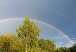 Выше радуги...