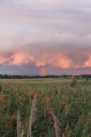 Удивительный кусочек радуги