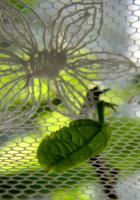 Листочек для цветочка