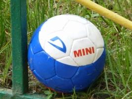 Мячик триколор