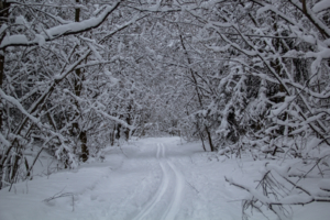 Зима,мороз,лыжи..