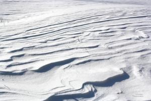 Снежный офорт