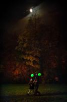 гулянья под луной