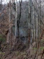Домик старичка-лесовичка