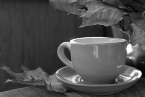 Осенний мадригал