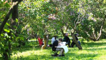 Юный художник в Сиреневом саду