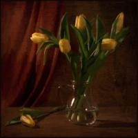Желтые тюльпаны...