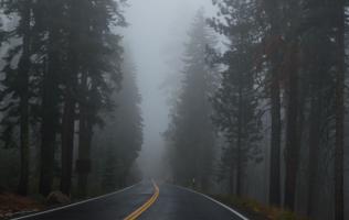За туманом и за запахом тайги...