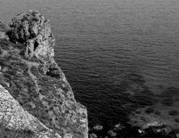 Владычица морская