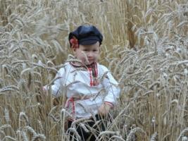 В поле...