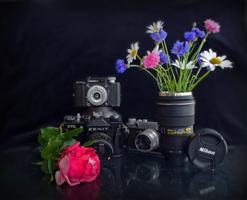 У фотографов праздник!