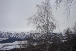 Алтай в январе