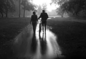 Тоскливый дождь по тоскливым нам