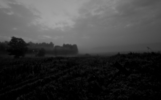 На сонные равнины пал туман