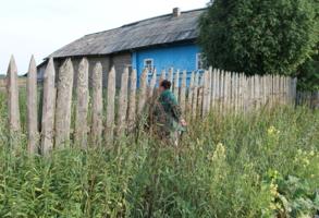 Чё там у соседей в огороде?