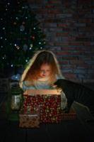 В новогоднюю ночь...