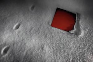 Следы кота у красного квадрата.