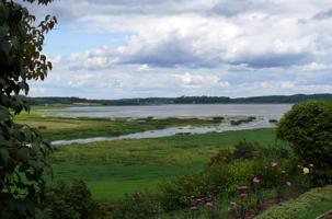 Михайловское, река Сороть