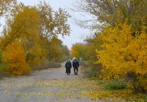 Осень жизни,