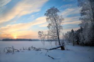 Вечернее безмолвие зимы