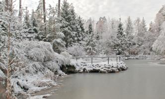 Тихо первый снег ложился...