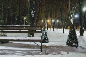 *И выпал первый снег*