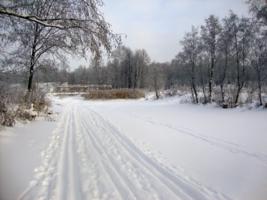 Лыжная дорога