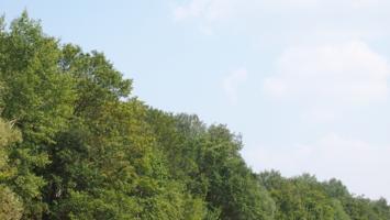 Зеленая гора