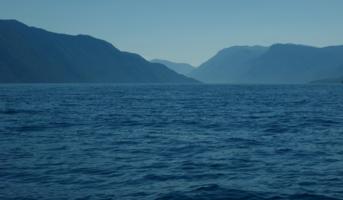 In blue tones