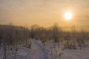 Туманный денек