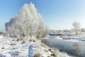 Морозное утро на Клязьме