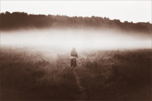 Жизнь прожить - не поле перейти.