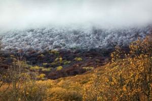 Осень, Зима.