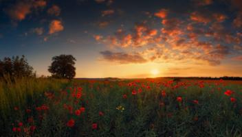 Закат на Красном море