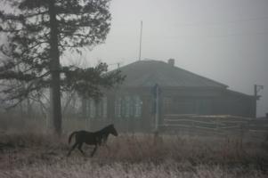 Утро в туман укуталось.