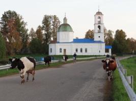 Деревенский экскорт.