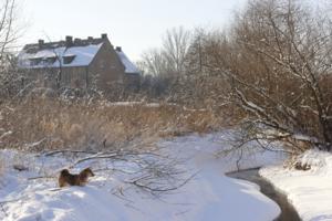 Зимнее село