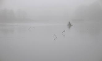 В туман