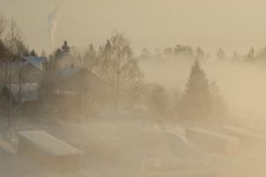 в морозном тумане